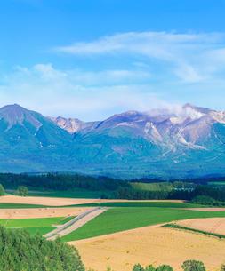 北海道 美瑛町点景  噴煙を上げる十勝岳の写真素材 [FYI01472534]