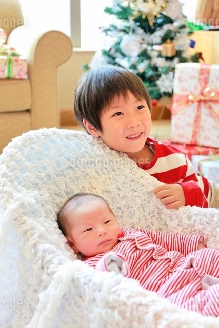 クリスマスツリーと赤ちゃんとお兄さんの写真素材 [FYI01472630]