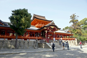 岩清水八幡宮(本殿)の写真素材 [FYI01472786]