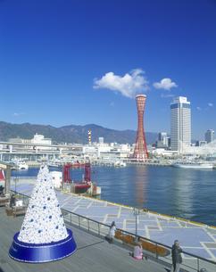 モザイククリスマスツリーと神戸ポートタワー昼景の写真素材 [FYI01472819]