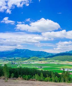 富良野点景  富良野盆地と夕張山地を望むの写真素材 [FYI01472841]