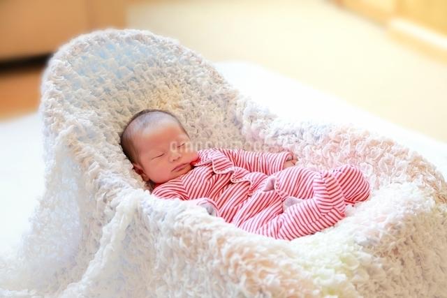 誕生三週間目の眠っている赤ちゃんの写真素材 [FYI01472982]