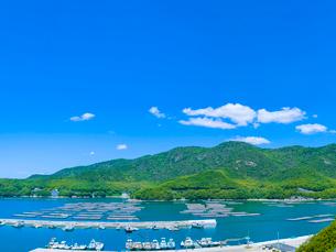 新緑の山並みと青空の室津湾の写真素材 [FYI01473162]