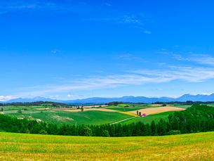 田園風景と青空の写真素材 [FYI01473389]
