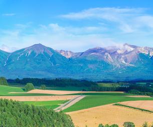 北海道 美瑛町点景  噴煙を上げる十勝岳の写真素材 [FYI01474139]