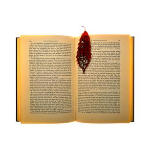 本と落ち葉のしおりの写真素材 [FYI01474294]