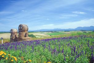 花畑と牧草ロ-ル人形の写真素材 [FYI01474297]