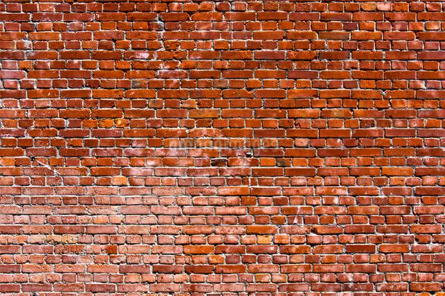 レンガ壁の写真素材 [FYI01474315]