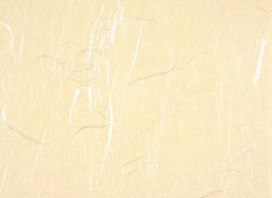 雲龍紙(和紙)の写真素材 [FYI01474754]