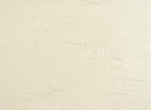 雲龍紙(和紙)の写真素材 [FYI01475007]