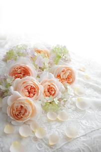 刺繍のある白い布の上に置かれたバラの花と花びらの写真素材 [FYI01476396]