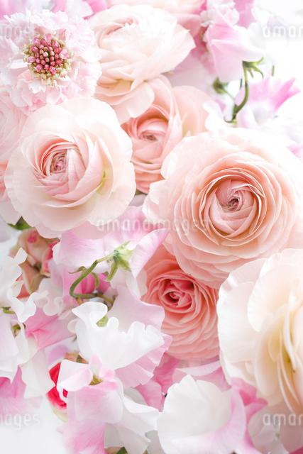 ラナンキュラスとスイートピーの花束の写真素材 [FYI01476712]