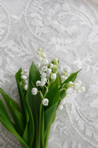 刺繍のある白い布の上に置かれた小さなスズランの花束の写真素材 [FYI01476937]