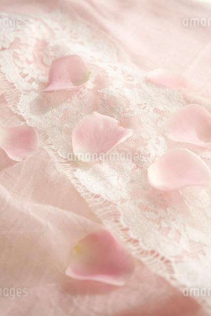 柔らかな布の上に散らばるバラの花びらの写真素材 [FYI01476948]