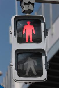 歩行者用信号機 赤の写真素材 [FYI01477021]
