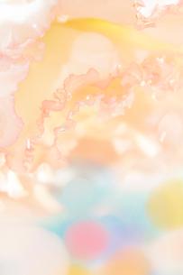 花びらと丸い透明のゼリーの写真素材 [FYI01477035]