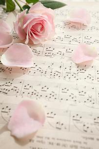 楽譜の上の一輪のバラの花の写真素材 [FYI01477042]