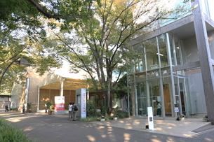 上野の森美術館の写真素材 [FYI01477085]