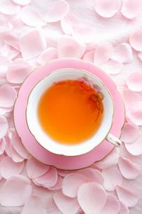 紅茶を入れたピンク色のティーカップとピンク色のバラの花びらの写真素材 [FYI01477156]