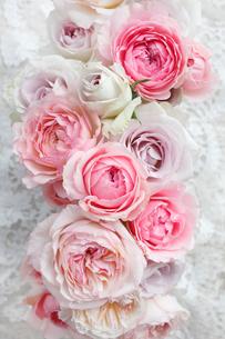 いろいろな種類のバラのアレンジメントの写真素材 [FYI01477299]