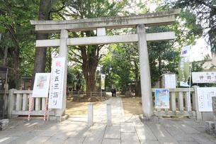 鳩森八幡神社の写真素材 [FYI01477431]