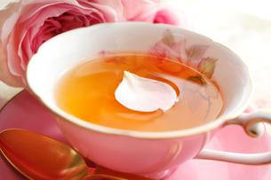 紅茶の上に浮かぶ花びらの写真素材 [FYI01477443]