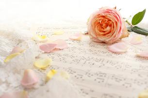 楽譜の上に置かれたバラの花の写真素材 [FYI01477874]