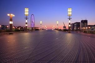 夢の大橋の夜景の写真素材 [FYI01478012]