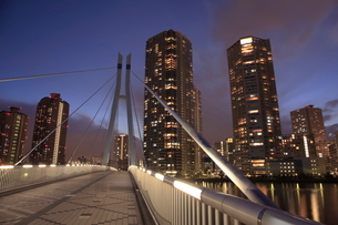 辰巳桜橋とタワーマンションの夜景の写真素材 [FYI01478182]