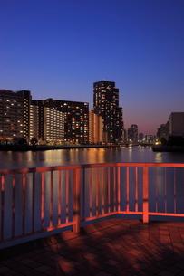 豊洲運河とマンション群の夜景の写真素材 [FYI01478477]