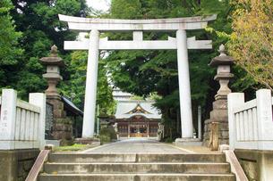 八坂神社の写真素材 [FYI01478994]
