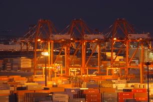 コンテナターミナルの夜景の写真素材 [FYI01479073]