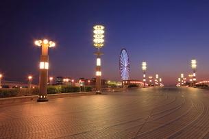 夢の大橋の夜景の写真素材 [FYI01479126]