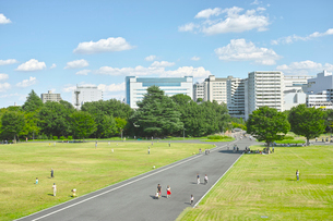 立川市のビル街と昭和記念公園の写真素材 [FYI01479169]