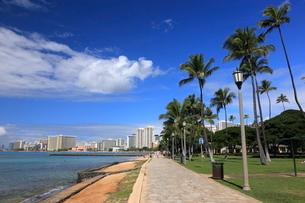 ワイキキビーチの遊歩道の写真素材 [FYI01479289]