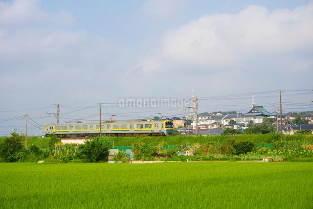 横浜高速鉄道こどもの国線の電車の写真素材 [FYI01479391]