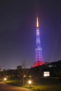 芝公園から東京タワーのライトアップ 夜景の写真素材 [FYI01479624]