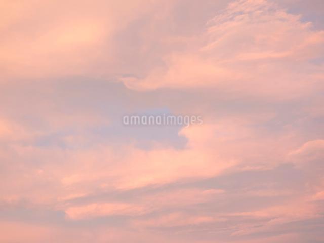 オレンジ色の夏空の写真素材 [FYI01479714]