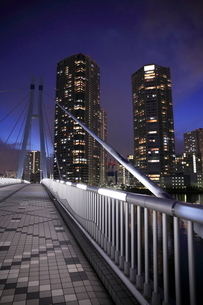 辰巳桜橋とタワーマンションの夜景の写真素材 [FYI01479761]