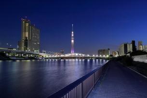 白髭橋とスカイツリーの夜景の写真素材 [FYI01479841]