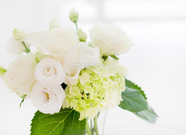 白い花のフラワーアレンジメントの写真素材 [FYI01480030]
