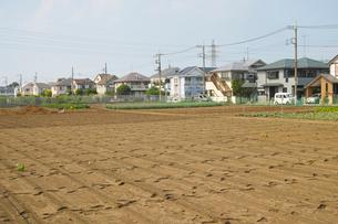 東京郊外の休耕地と住宅街の写真素材 [FYI01480053]
