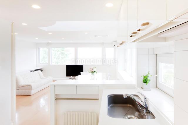 キッチンとリビングルームの写真素材 [FYI01480179]