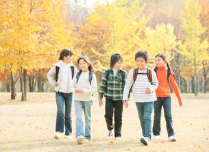 紅葉の中で遠足を楽しむ小学生の写真素材 [FYI01480219]