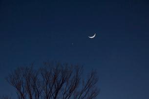 月と金星の写真素材 [FYI01480246]