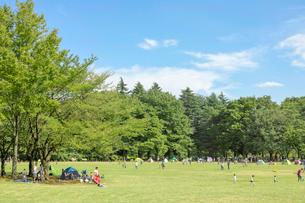 小金井公園の夏の写真素材 [FYI01480291]