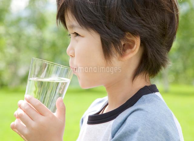 新緑の中で水を飲む男の子の写真素材 [FYI01480337]