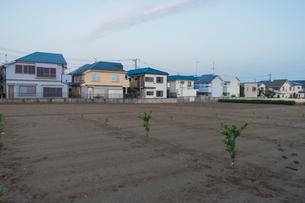 住宅街と空き地の写真素材 [FYI01480387]