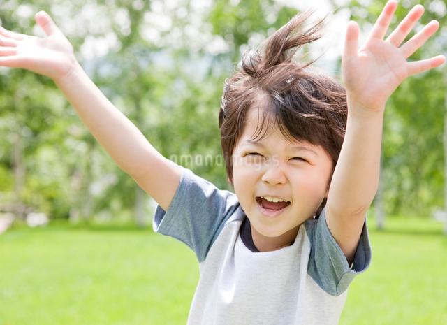 新緑の中で両手をあげて笑う男の子の写真素材 [FYI01480393]