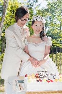 結婚披露宴 ガーデン・パーティーでの新郎新婦によるケーキ入刀の写真素材 [FYI01480437]